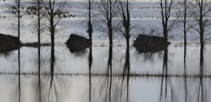 Somerset Floods, from Flickr, under Creative Comms by nicksarebi