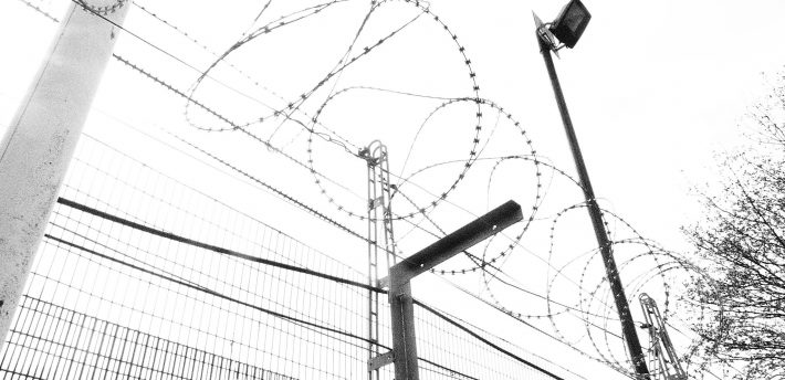 Barbed wire pic by Terry Freeman, from Flickr